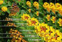 Megapixel kamera digital
