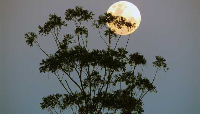Bulan Purnama dan Supermoon