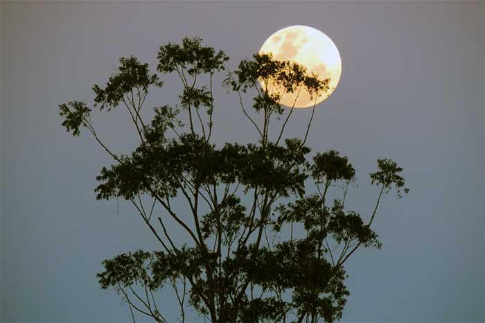 Bulan Purnama dan Supermoon