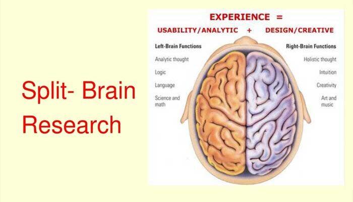 Penelitian Teknik Split Brain